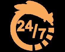24h7j 2